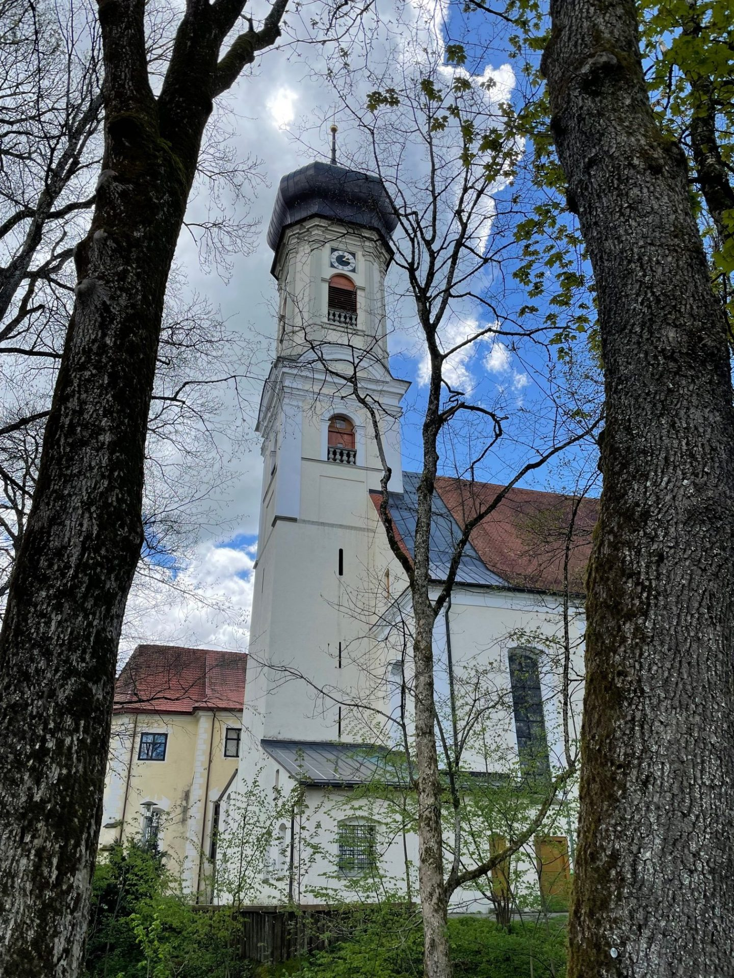 Bücherturm-Projekt: Siegerturm ist 505 PISA hoch