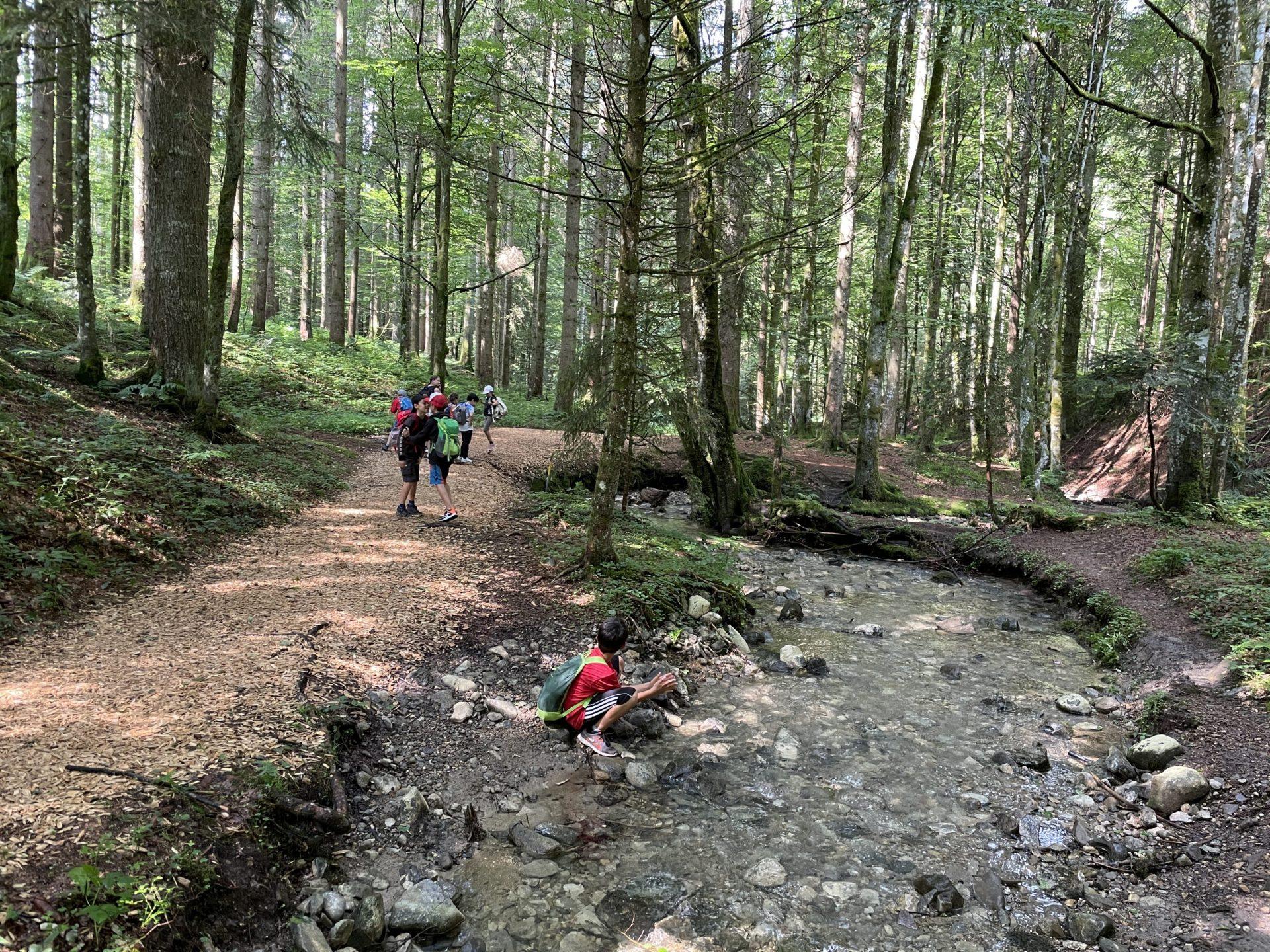 Wanderung auf dem Carl-Hirnbein-Weg